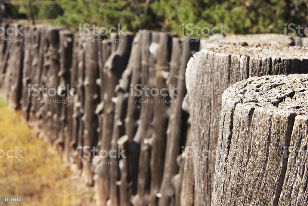 \'Weathered wood sapling posts wired together to form an animal pen...