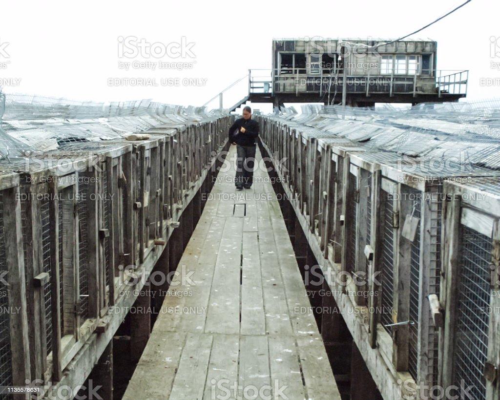 Bilibino, Chukotka, Russia - June 14, 2015: Corridor between cages...