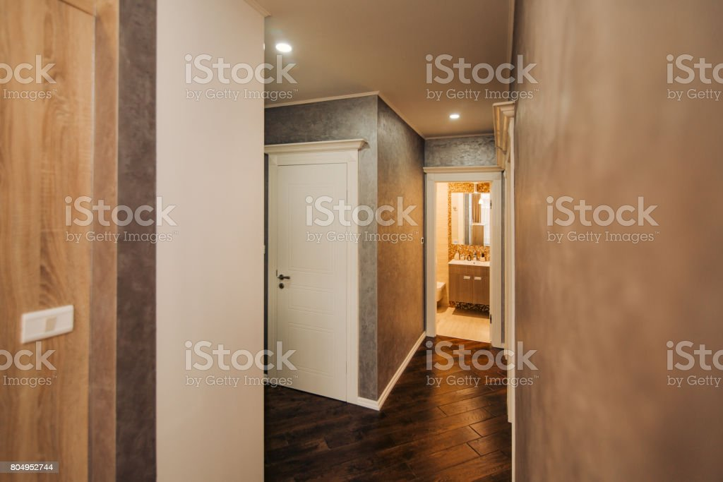 Corridor In The Apartment The Front Door To Room Stock Photo - Download  Image Now
