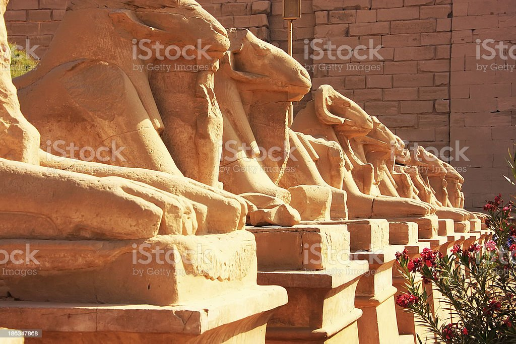 Corridor of Sphynxes, Karnak temple complex, Luxor royalty-free stock photo