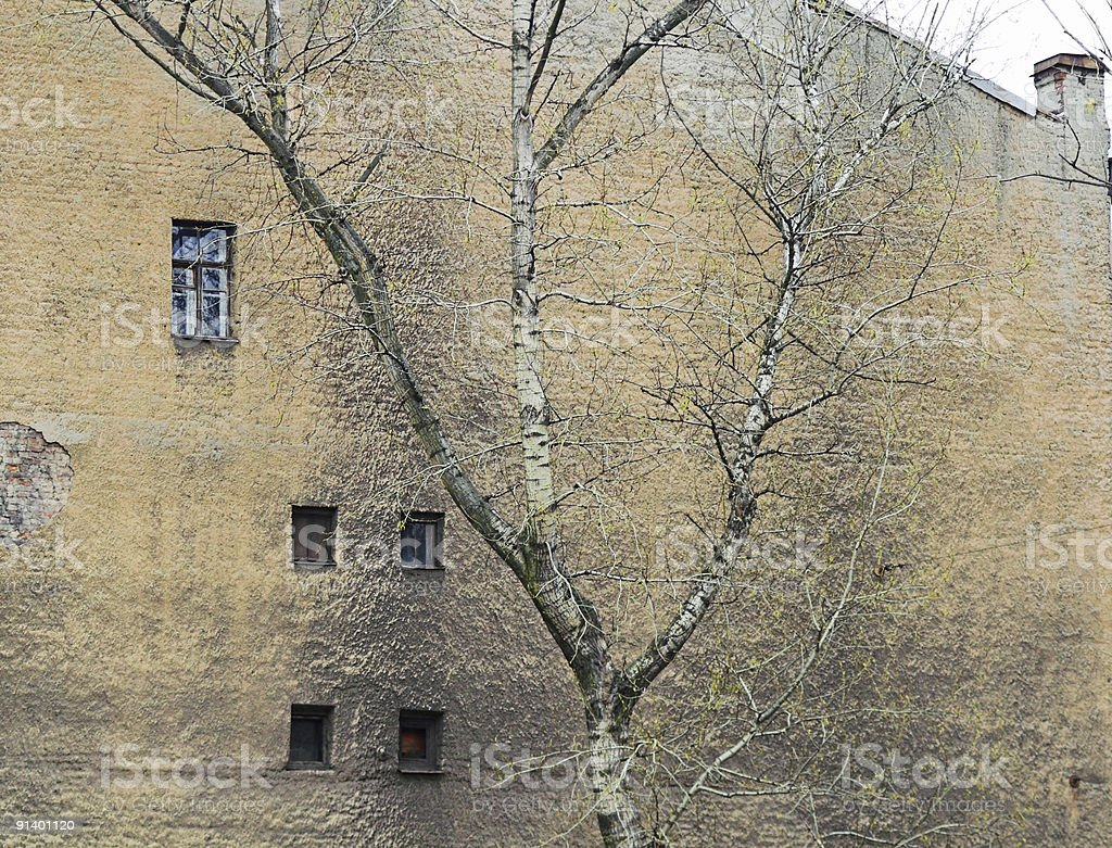 corroded wall with windows stock photo