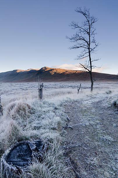 Corrour Estate - Scotland stock photo