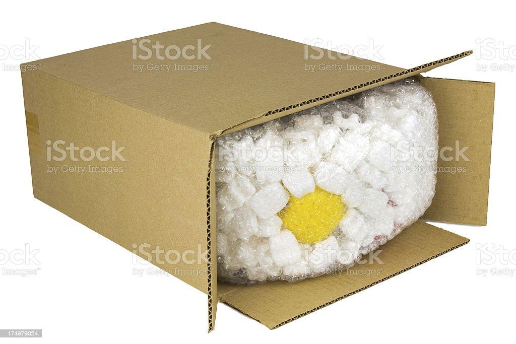Corrugated Cardboard Box royalty-free stock photo