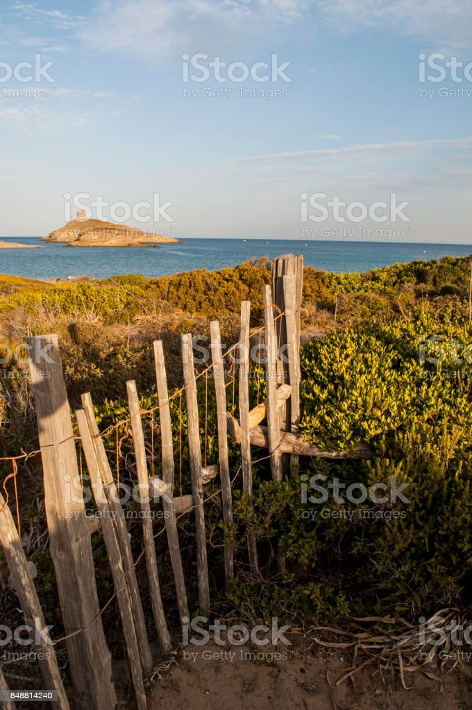 Corsica: Mediterranean maquis on a coastal path on the Cap Corse with view of the nature reserve of les Iles Finocchiarola (Finocchiarola Islands) stock photo