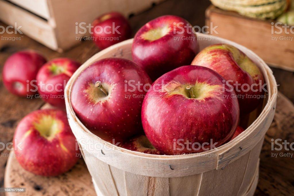 코틀랜드 사과들 - 로열티 프리 0명 스톡 사진