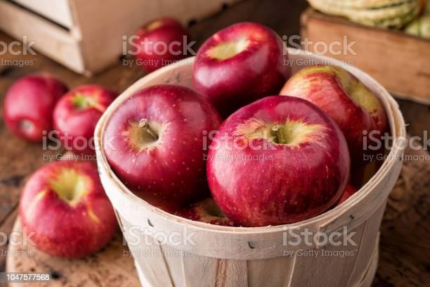 코틀랜드 사과들 0명에 대한 스톡 사진 및 기타 이미지