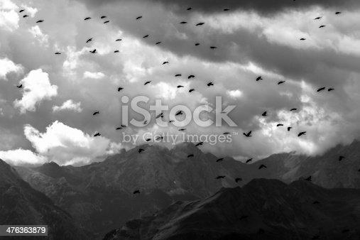 istock corvi che volano sulle cime alpine - B&N 476363879