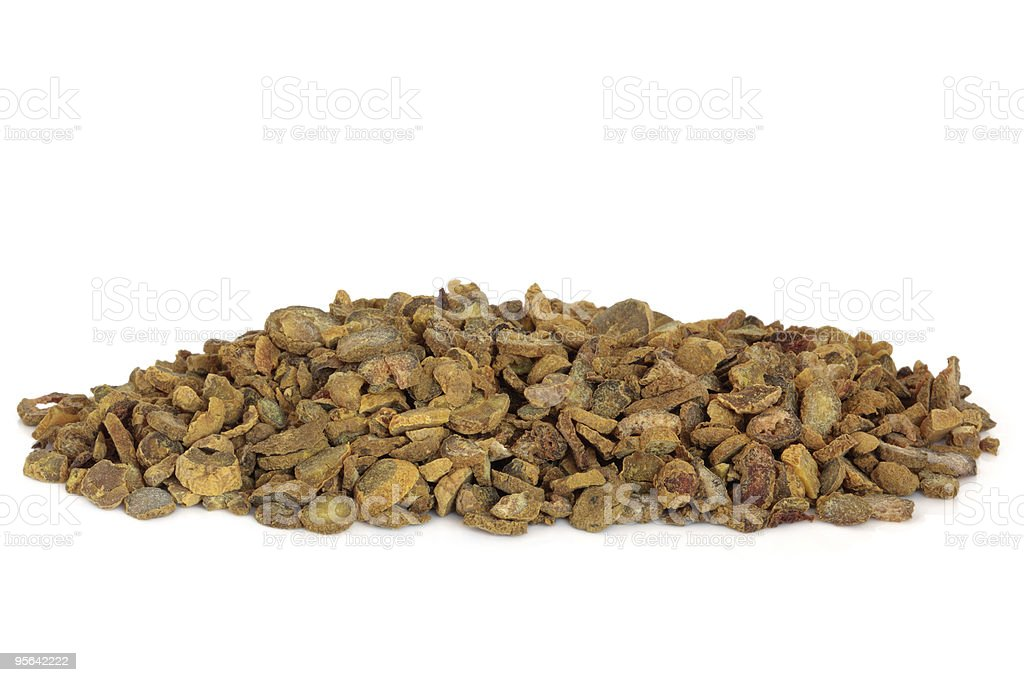 Corydalis Tuber stock photo