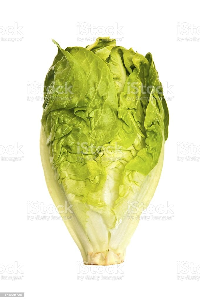 Cos Lettuce royalty-free stock photo