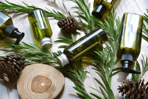 Kosmetische Flaschenbehälter Verpackung mit grünen Kräuterblättern, Blank Label für Bio-Branding Mock-up, natürliche Hautpflege Schönheit Produktkonzept. – Foto