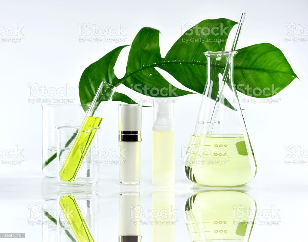 Kosmetische Flasche Behälter mit grünen Kräuter Blätter und wissenschaftliche Glaswaren, leeres Etikett Paket für branding-Mock-up, Forschung und natürliche Bio-Beauty-Hautpflege-Produkt-Konzept zu entwickeln. – Foto