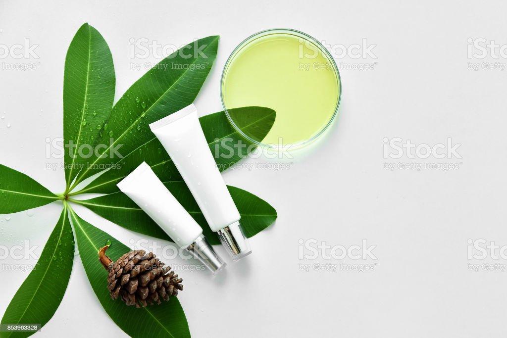 Kosmetische Flasche Behälter mit grünen Kräuter Blätter, leeres Etikett Paket für branding Mock-up, natürliche Bio-Beauty-Produkt-Konzept. – Foto
