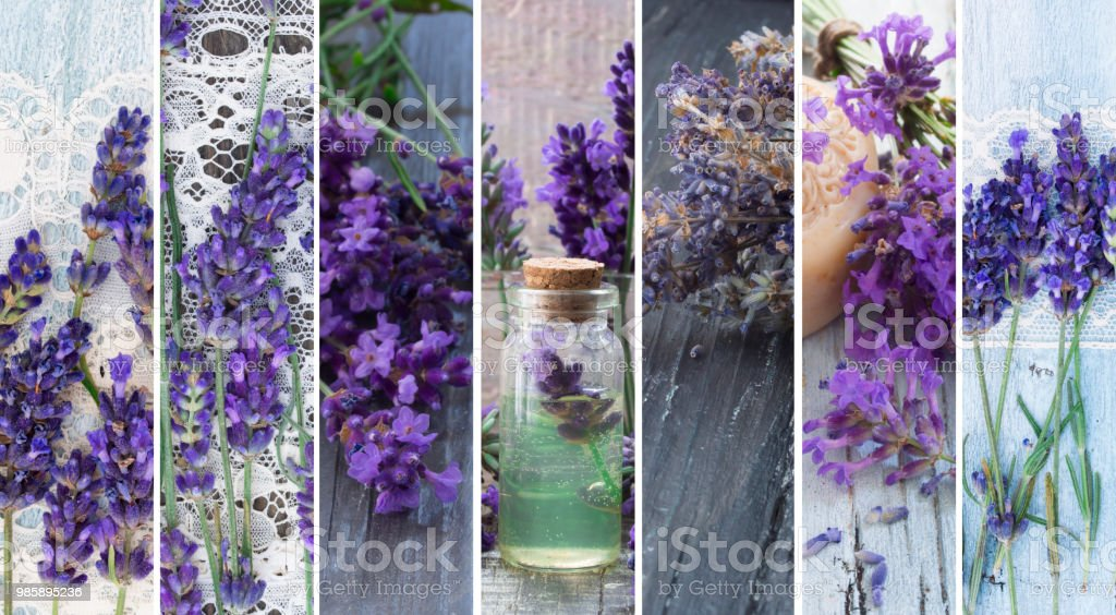 cosmetic product with lavender  flowers stock photo