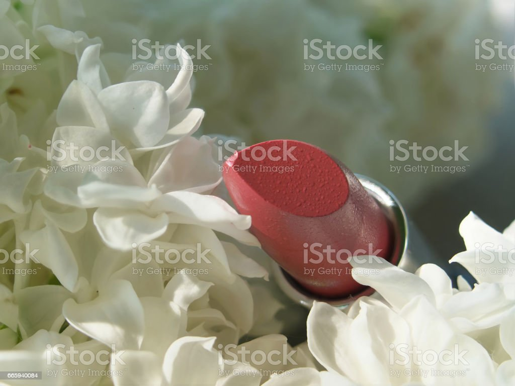 cosmetics and lilac blossom tube Lipstick on white Lilac flowers background stock photo