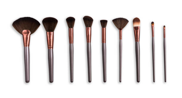 Cosmetics, beauty, make-up brushes set in row Cosmetics and beauty. Make-up brushes set in row on white isolated background make up brush stock pictures, royalty-free photos & images