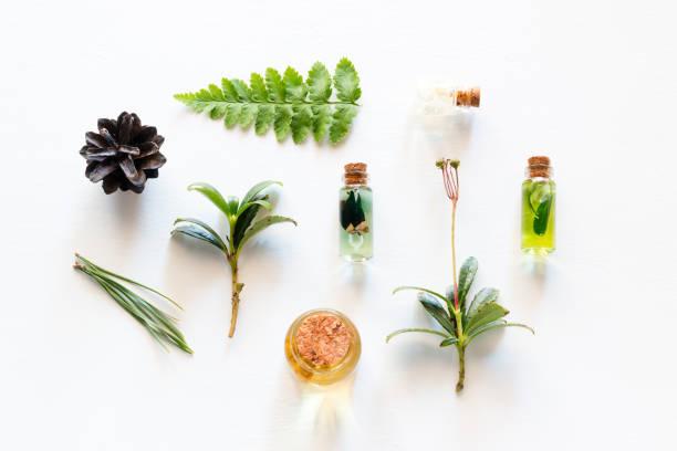 cosméticos com ingredientes naturais de madeira - condição natural - fotografias e filmes do acervo