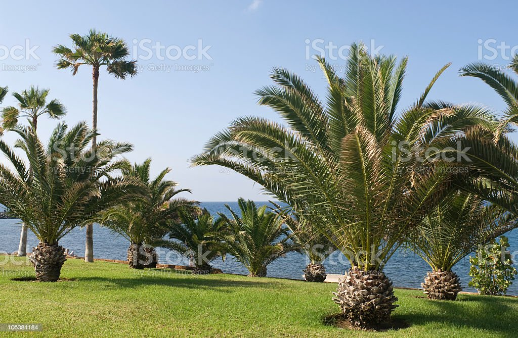 Costa Adeje, Tenerife foto stock royalty-free