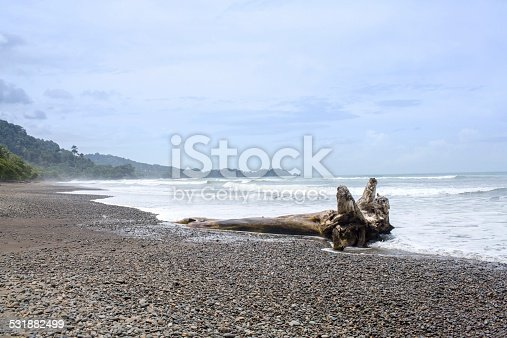 istock Costa Rica Beach with a Big Piece of Driftwood 531882499