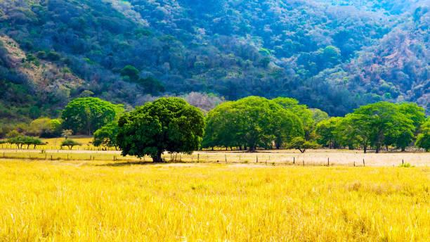 Costa Rica - Kulturlandschaft – Foto