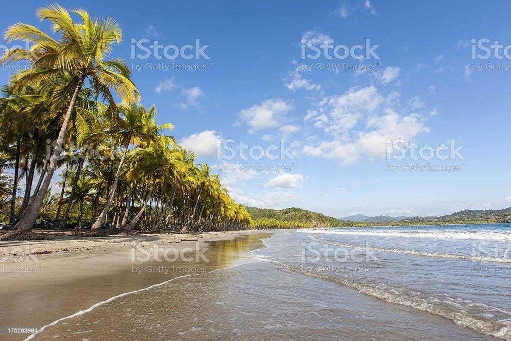 Costa Rica Dream Beach royalty-free stock photo