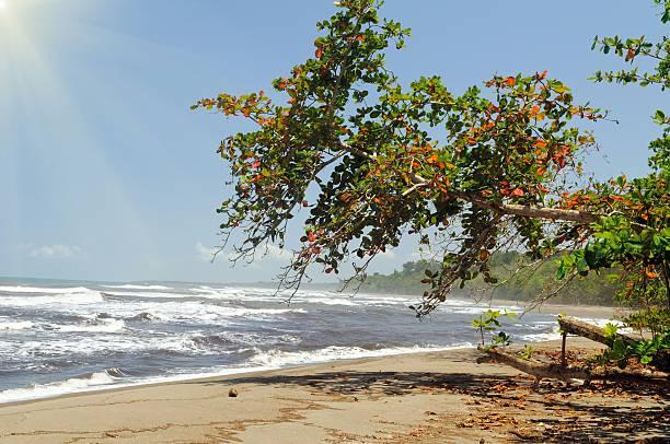 Costa Rica pristine beach – Foto