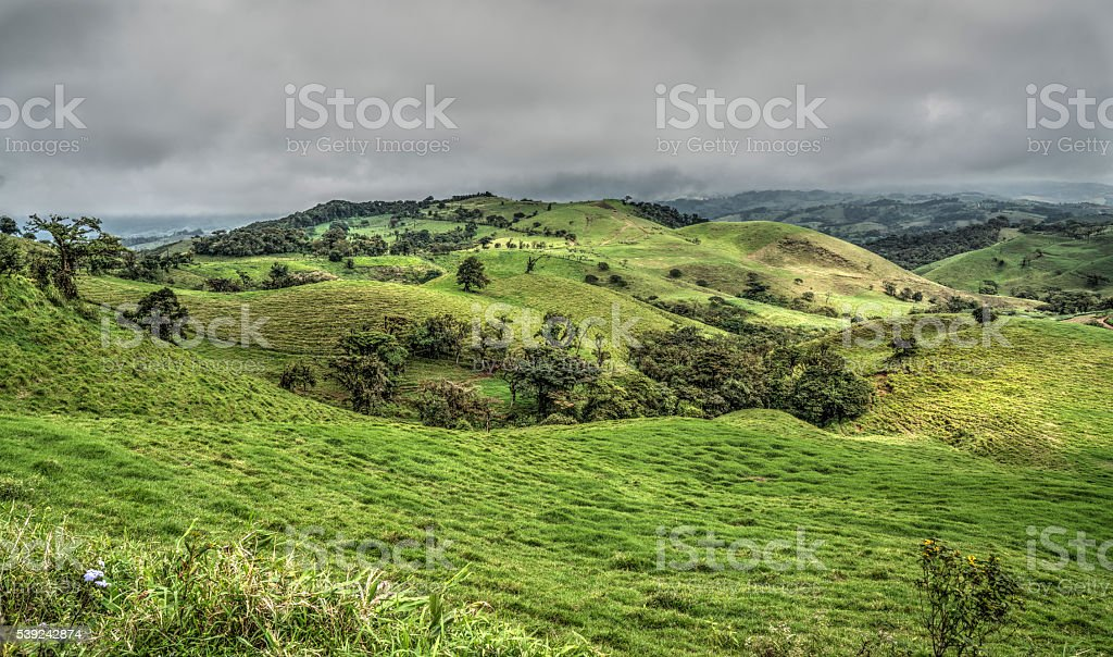 Costa Rican fields royalty-free stock photo