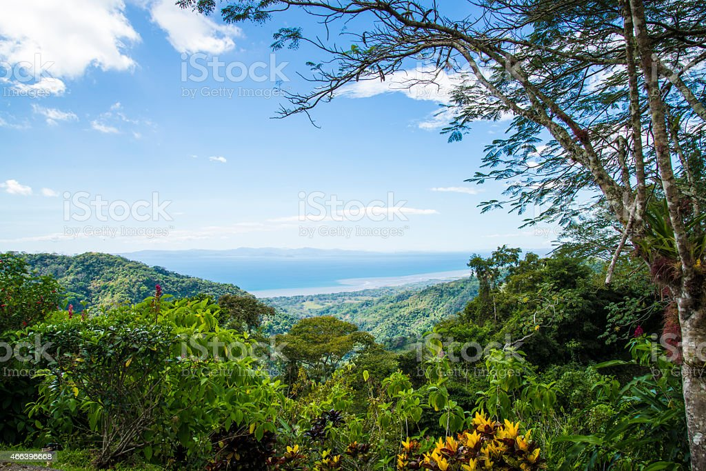 Costa Rican jungle view of the trees and mountains stock photo