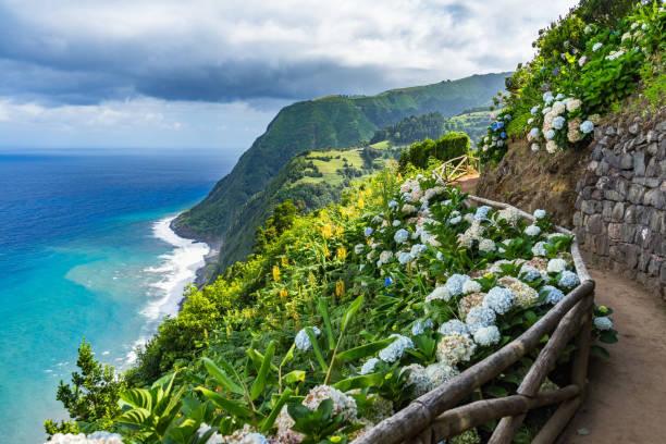 Coastal Path mit Hortensien, Sao Miguel, Azoren, Portugal – Foto