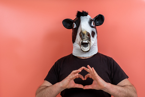 costumed person wearing a cow mask making a heart shape with hands