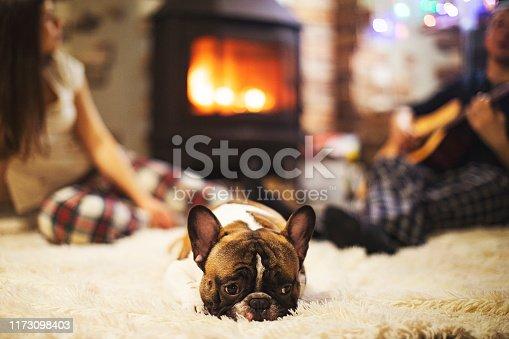 Cosy winter holidays