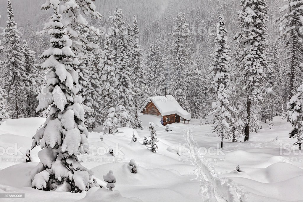 Cottage among snowy forest stock photo