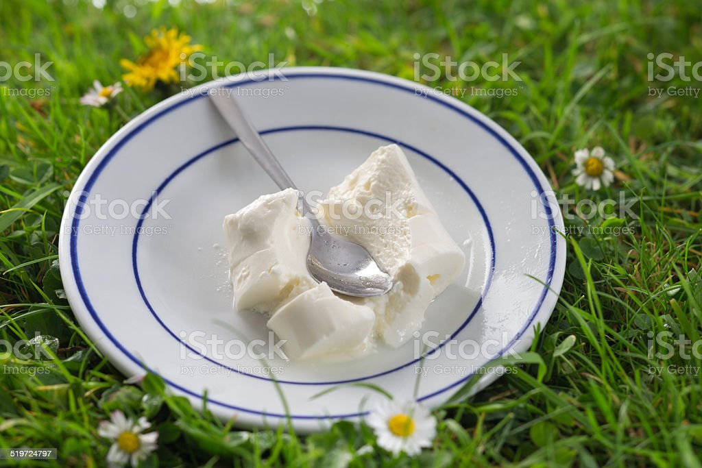 Cottage cheese stock photo
