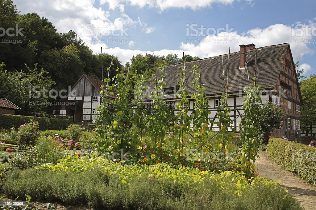 Cottage Garden stock photo