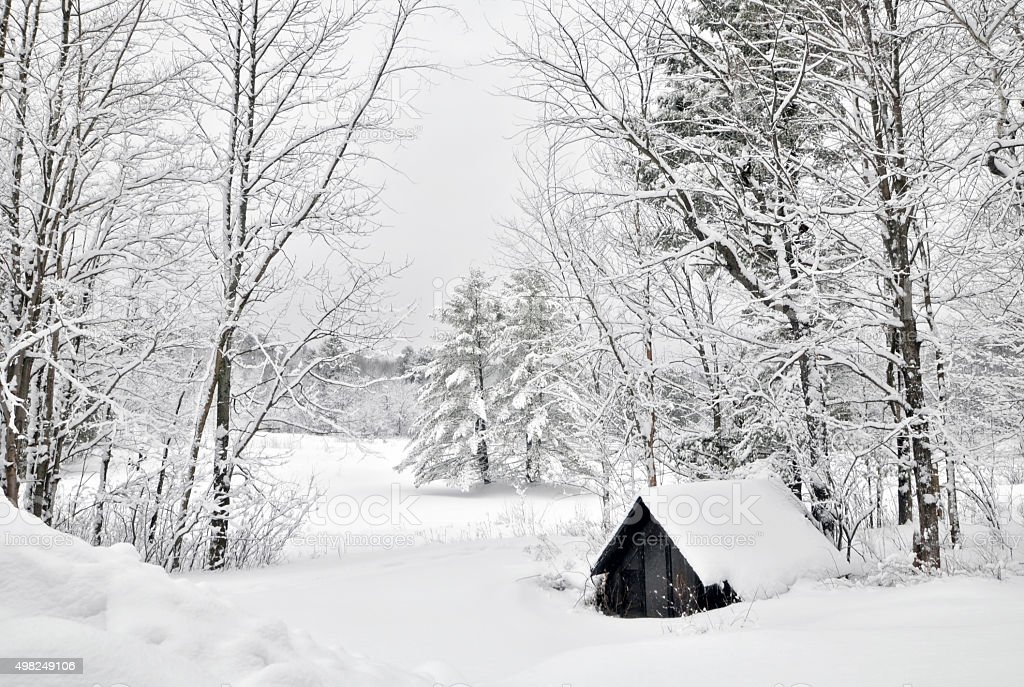 Cottage in a snowy landscape. stock photo
