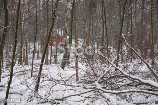 istock Cottage in a winterforest 149287203