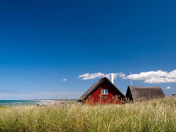 cottage in loenstrup, dänemark - strohdach stock-fotos und bilder