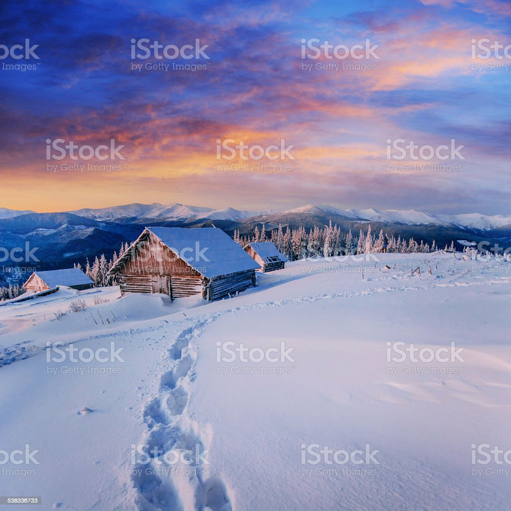 cottage in snowy mountains with fabulous winter trees stock photo