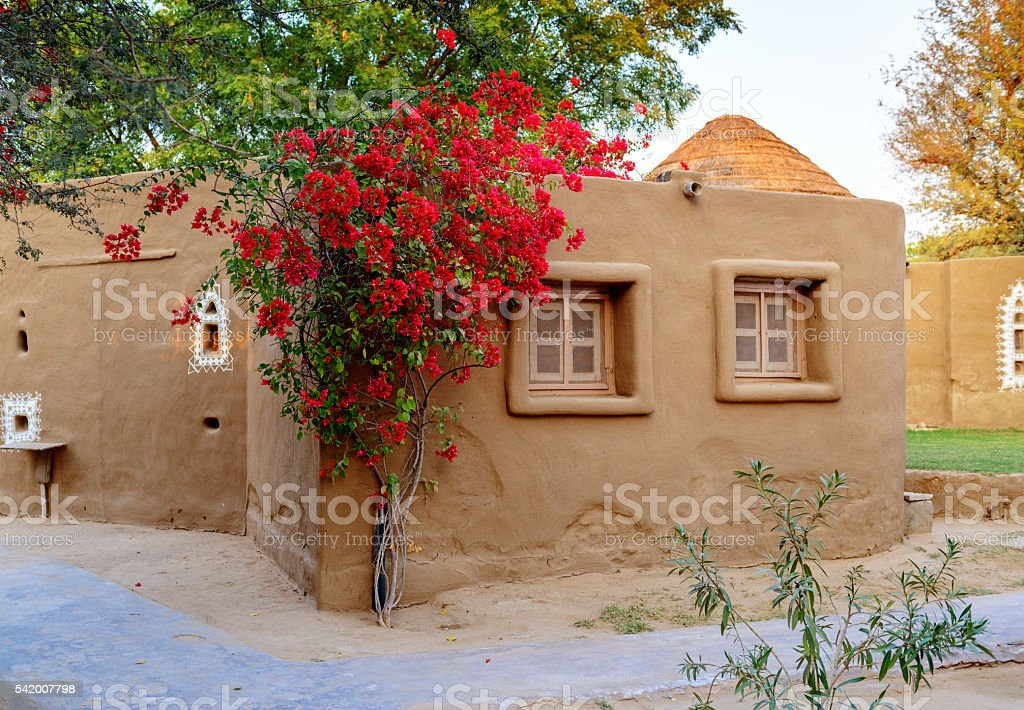 Cottage of earth with twining tree, Rajasthan, India stock photo