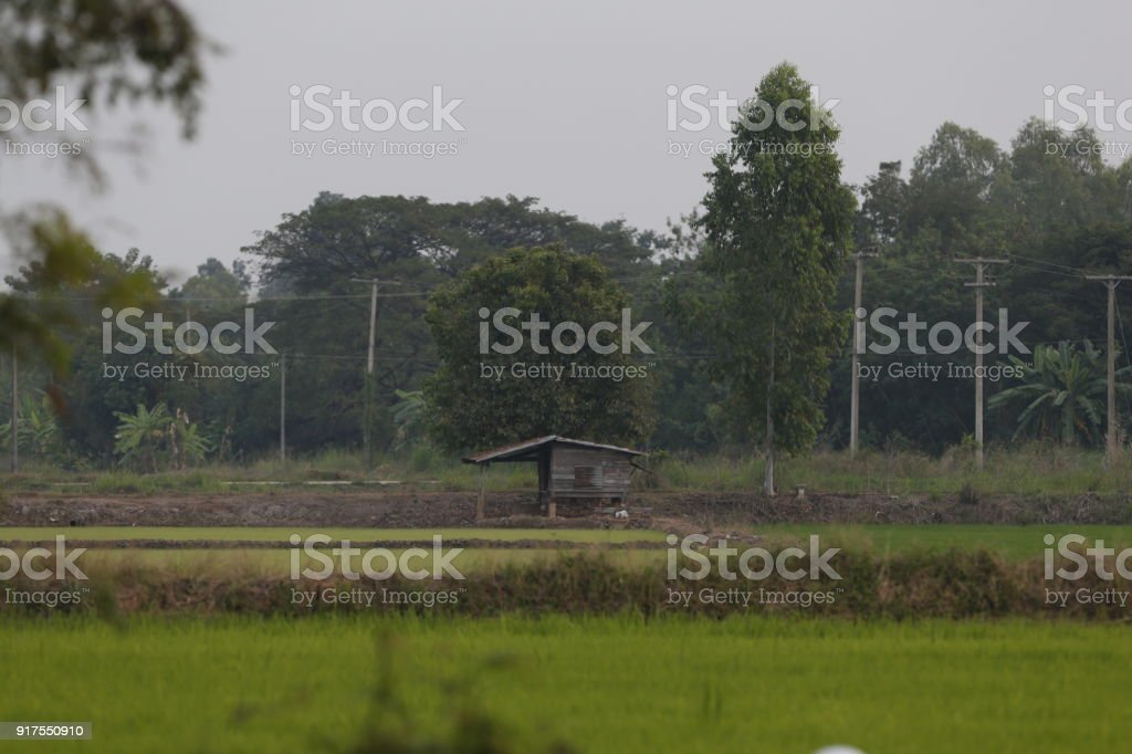 Cottage of farmer stock photo