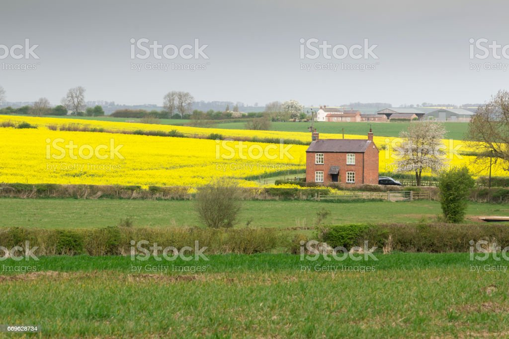 Cottage On The Farm stock photo