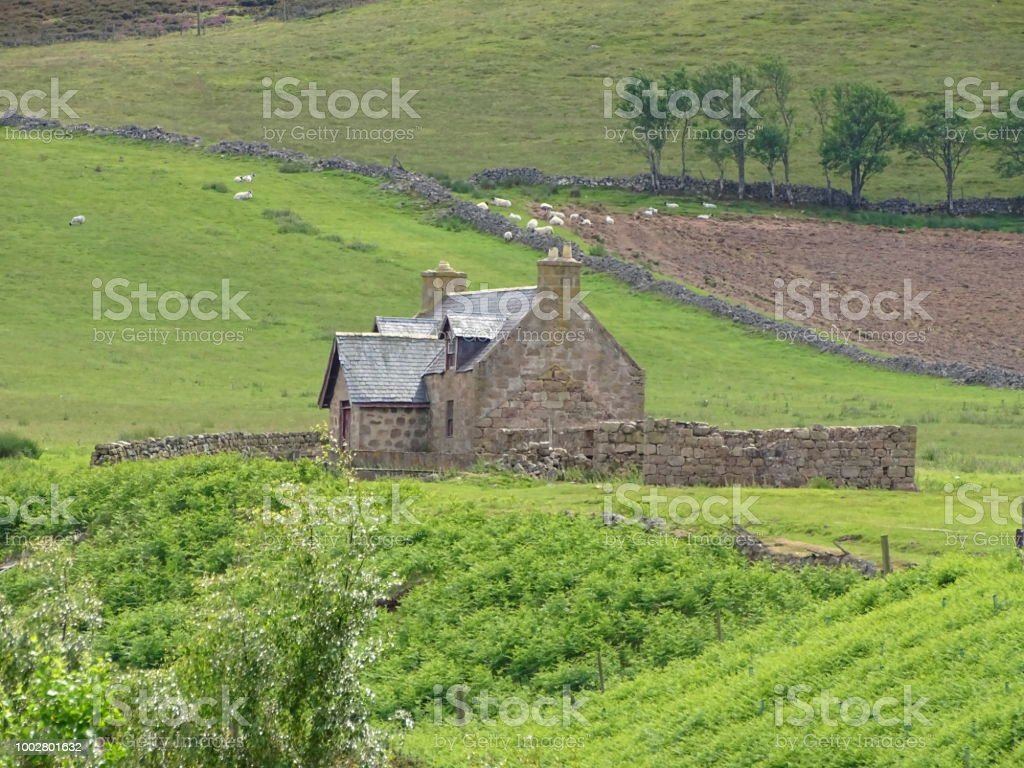 cottage  – Foto
