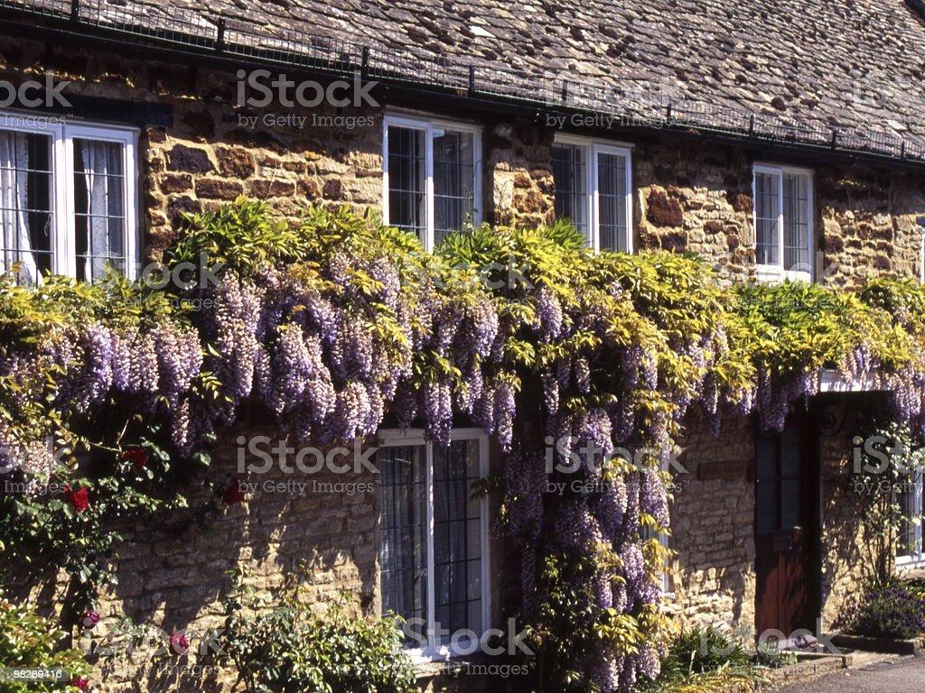 Cottage with Wistaria. Steeple Aston. Oxfordshire. England royalty-free stock photo