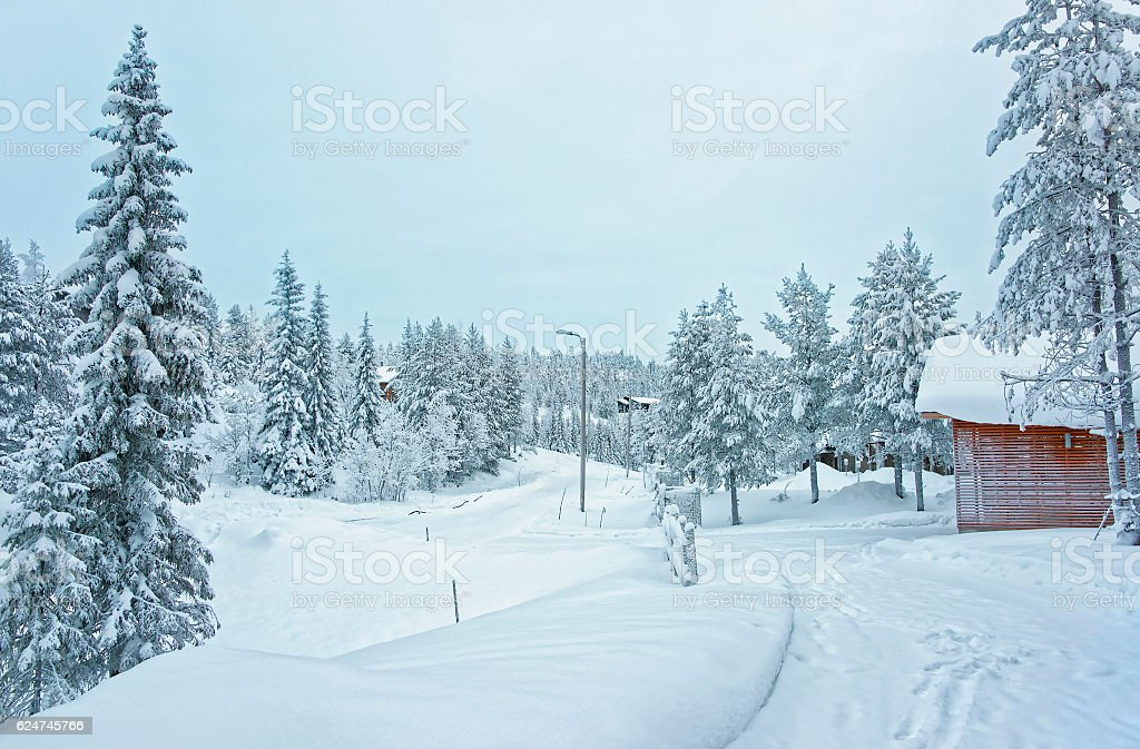 Cottages and trees in the snow covered Ruka in Finland stock photo