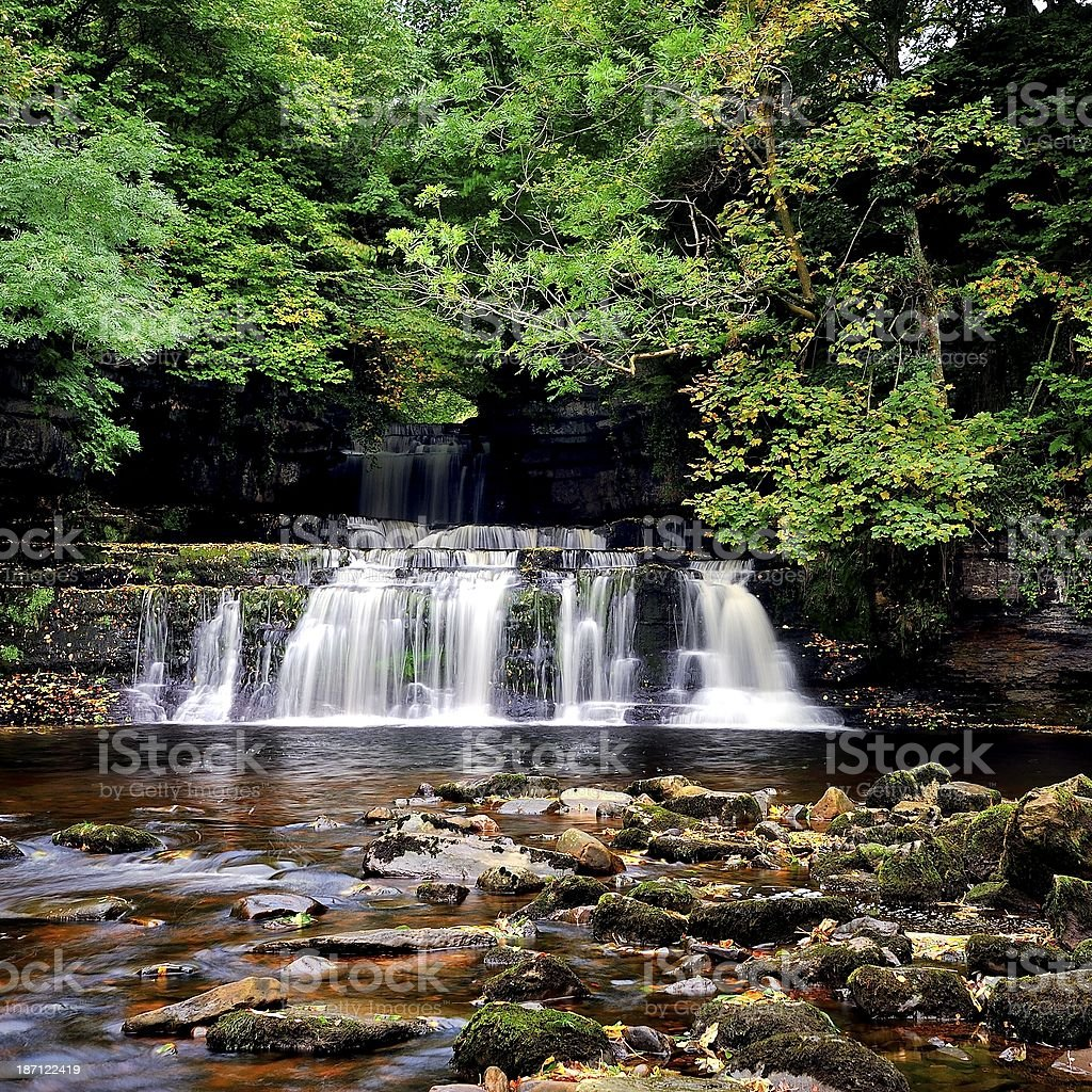 Cotter Force royalty-free stock photo