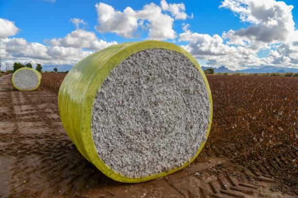 Cotton Bale stock photo