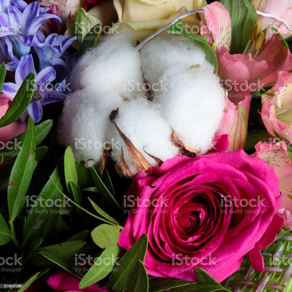 Cotton bouquet stock photo