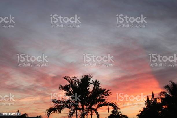 Photo of Cotton candy sky