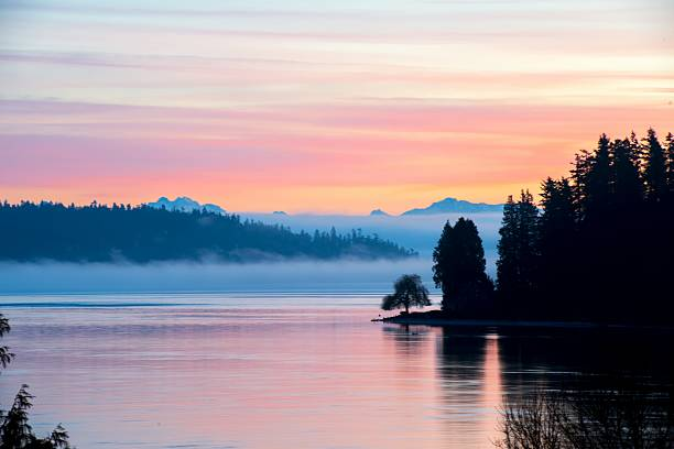 Cotton Candy Sunrise Pastel sunrise with fog.  puget sound stock pictures, royalty-free photos & images