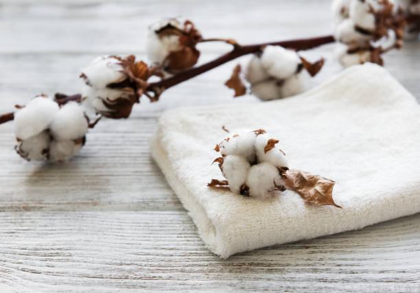 綿の花とタオル ストックフォト