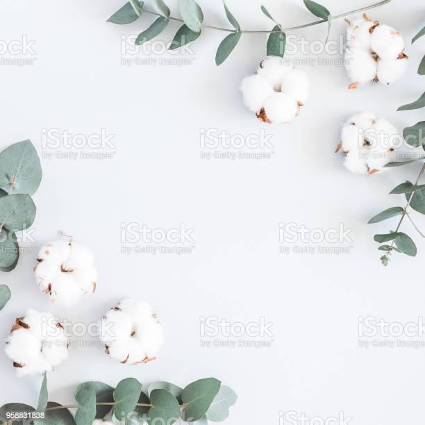 Cotton flowers and eucalyptus branches flat lay top view picture id958831838?b=1&k=6&m=958831838&s=612x612&h=5hycsbyy3fu6io9izggrl3qz2fwvivfornnsp0d27tk=